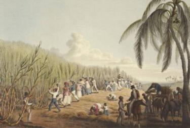 【歴史の闇】マカオ禁断の奴隷貿易【動画あり】